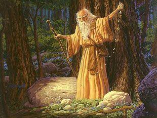 image-druide.jpg